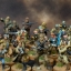 Star Wars Legion: Rebel Force